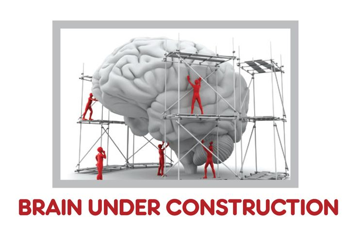 """When you ask a teenager, """"Why did you DO that?"""" and you get the blank stare -- remember, their brain is still under construction."""