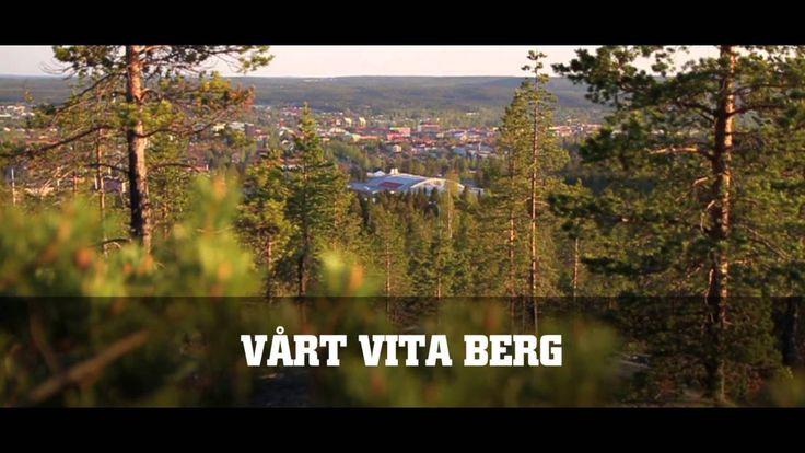 HELA SVERIGES AIK