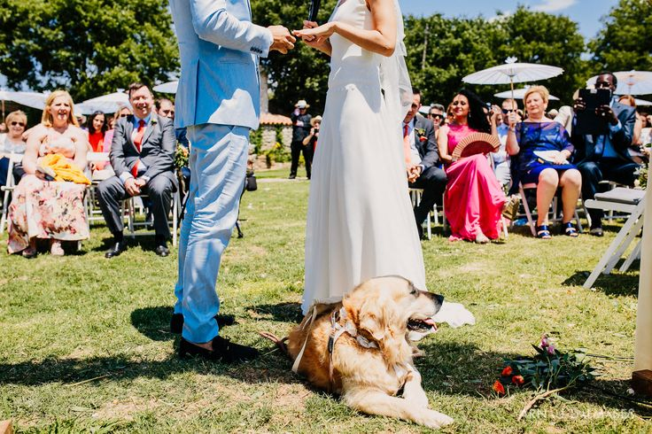 Maria & Jordi, boda en Sellarés Rural — Fotógrafo Bodas Barcelona - Arnau Dalmases - Fotógrafo Barcelona