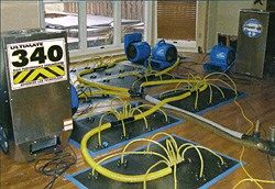 Types of Flood Water Damage #flood #water #damage, #cleaning, #flood, #water #damage, #types, #carpet, #repair, #water #extraction, #damages, #restoration, #portland, #maine http://cars.nef2.com/types-of-flood-water-damage-flood-water-damage-cleaning-flood-water-damage-types-carpet-repair-water-extraction-damages-restoration-portland-maine/  # Types of Flood Water Damage Leaks, flood water, and other water issues can cause a variety of types of damage to your home or building as well as your…