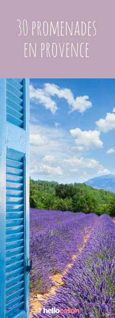 30 conseils pour découvrir la Provence et ses magnifiques champs de lavande ! #france #provence #voyage #lavande