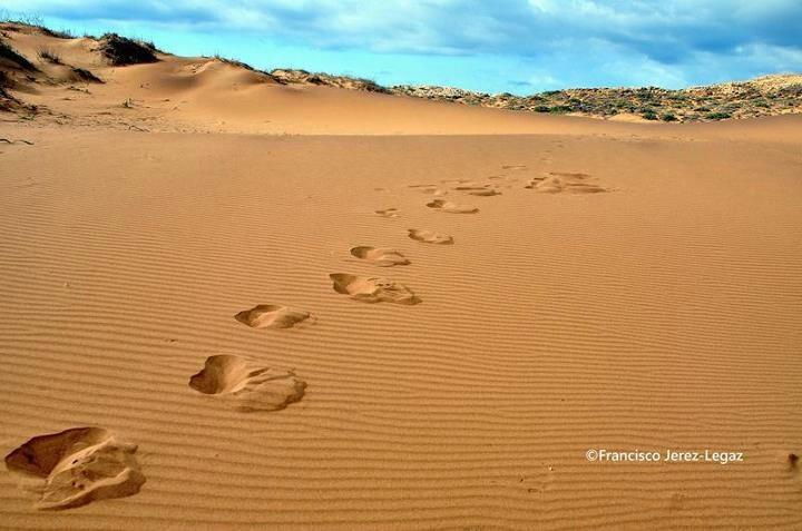 Senderos de arena de Calblanque