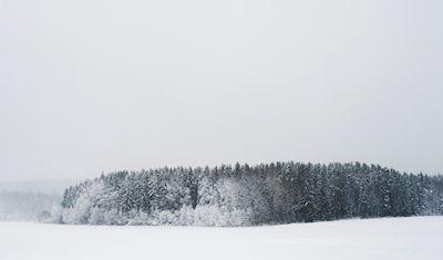 Ida Olsson - Vinterlandskap