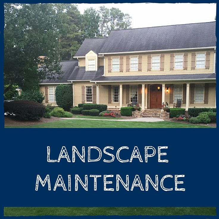 Landscape Design/Build and Maintenance Backyard oasis