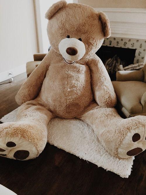 47 best my love teddy images on pinterest giant teddy bear bear costco bear tumblr google search publicscrutiny Choice Image