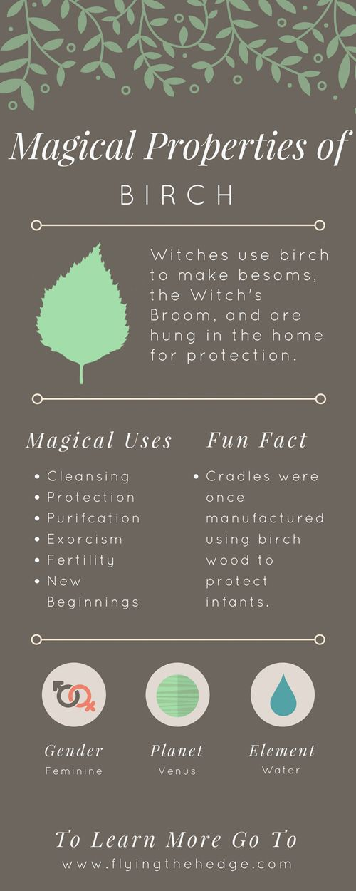 Magical Properties of Birch