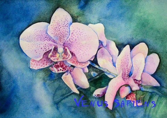 Acquarello originale orchidea selvaggia etude di VenusSapiens