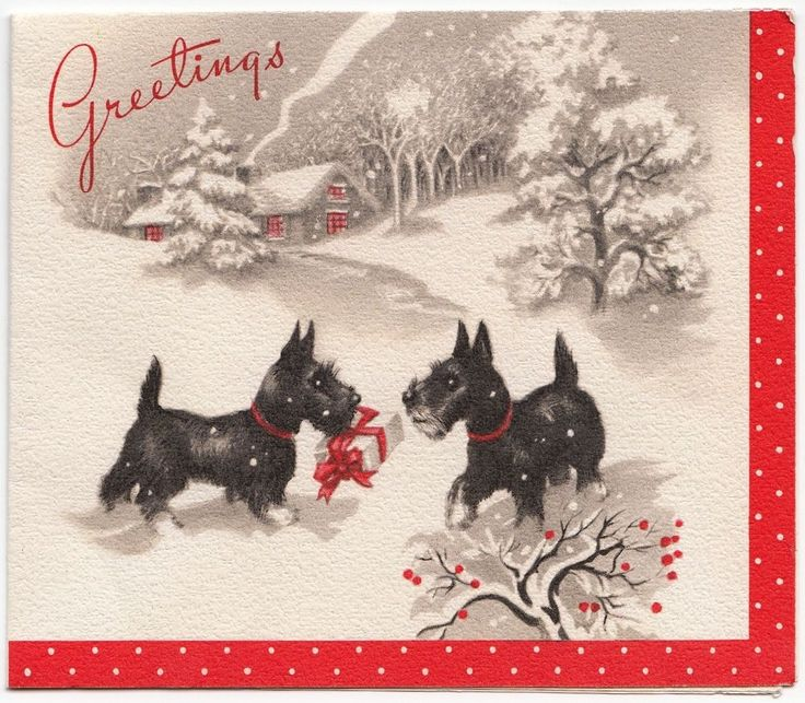 Vintage Greeting Card Christmas Scotty Dog Terrier Snow e644