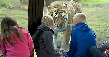 Knuthenborg Safaripark - en oplevelse vildere