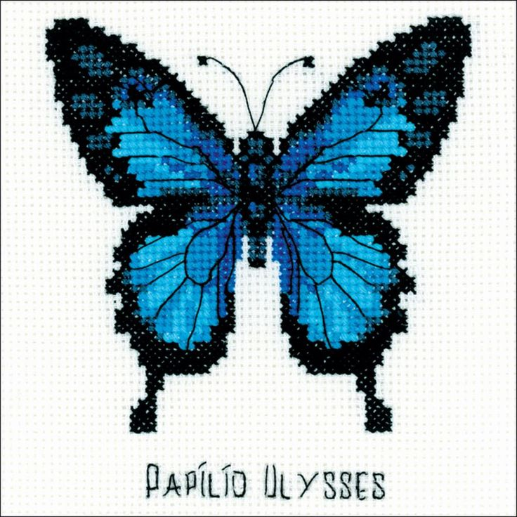Ulysses Butterfly Counted Cross Stitch Kit