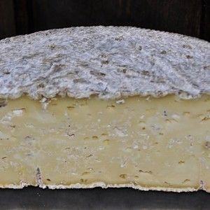 Strachitunt PDO #Cheese #Italiancheese #ItalianFood #Italy #Lombardia http://www.formaggio.it/formaggio/strachitunt-d-o-p/