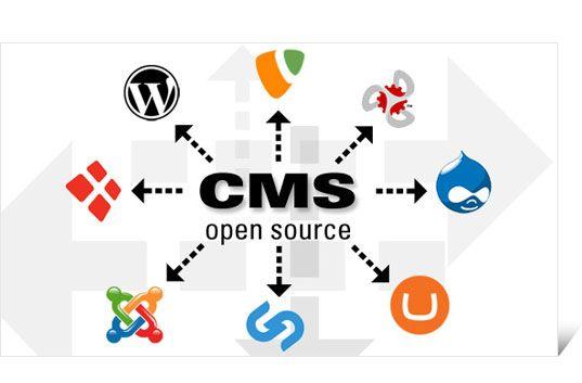 Open source #CMS based web Application #Development Company: Plutus