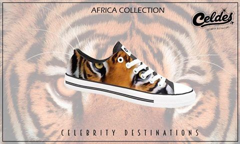 tiger, africa, animal, wild, african life, jungle, fashion