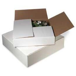 Do yourself a favor and buy some of these boxes for all those wreaths you've been making. $2.09