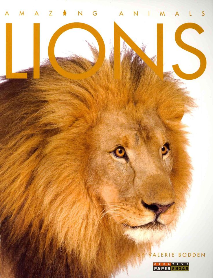 A basic exploration of the appearance, behavior, and habitat of lions, the majestic big cats of Africa and India. Also included is a story from folklore explaining why lions roar--Provided by publishe