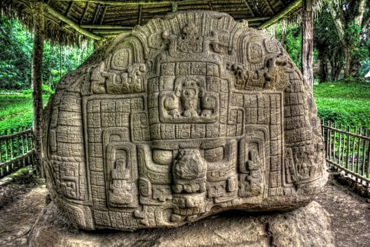 Zoomorph P: a masterpiece of ancient art. Located at the Maya site of Quiriguá, Guatemala.  Dedicated in AD 795, this extraordinarily carved boulder stands as a testament to the skill and beauty of Maya bas-relief sculpture during the late Classic Period.