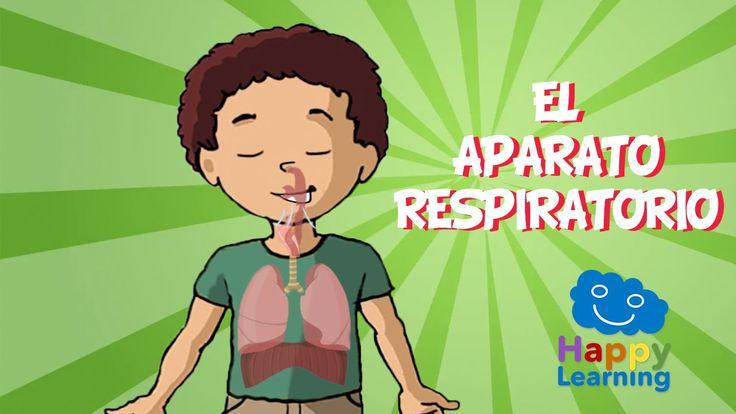 Vídeo sobre el aparato respiratorio para niños de primaria