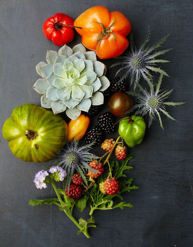 Amazing Style / Johnny Miller: Inspiration, Color, Still Life, Art, Food Styling, Garden, Photo, Johnny Miller, Flower
