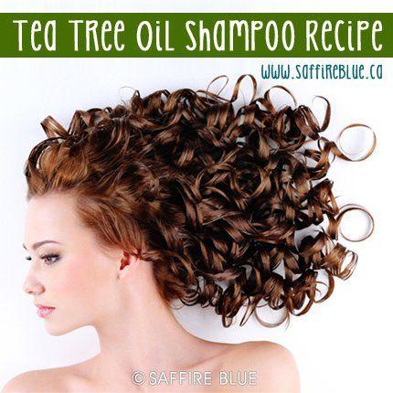Tea Tree Oil Shampoo Recipe- 1/4 cup Distilled Water--1/4 cup Liquid Castile Soap--10 drops Tea Tree Essential Oil-- 1/2 teaspoon Apricot Kernel Oil and mix!