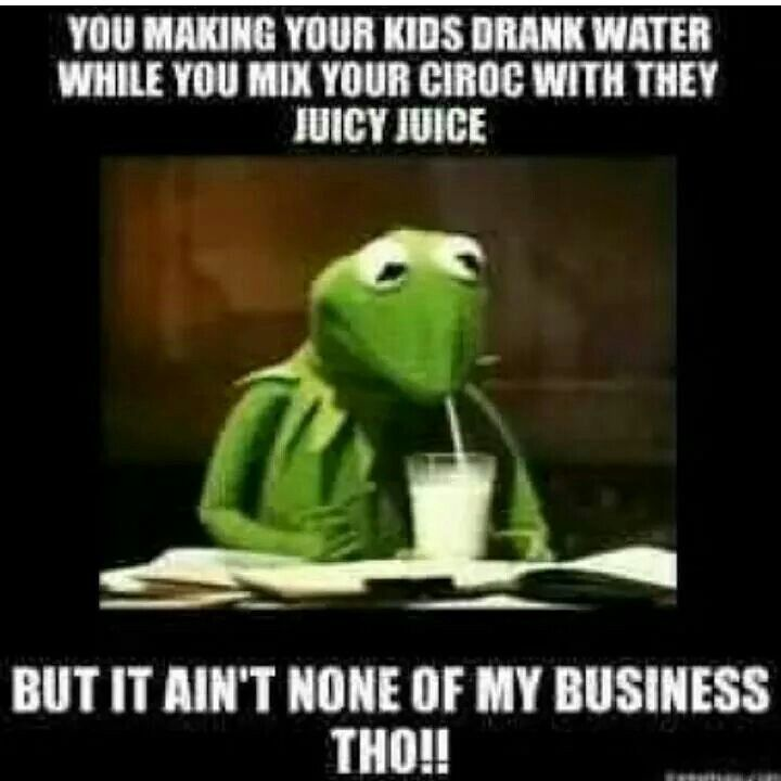 Funny Memes About Drinking Water : Best images about kermit the frog on pinterest