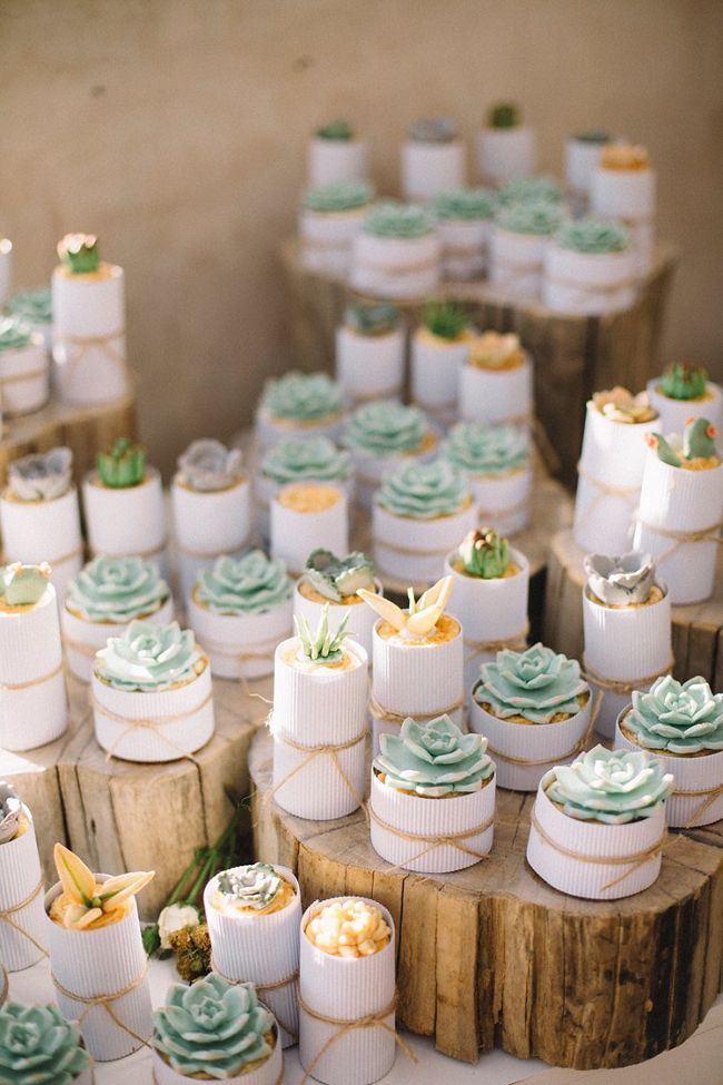 Sugar succulent topped cupcakes | SouthBound Bride…