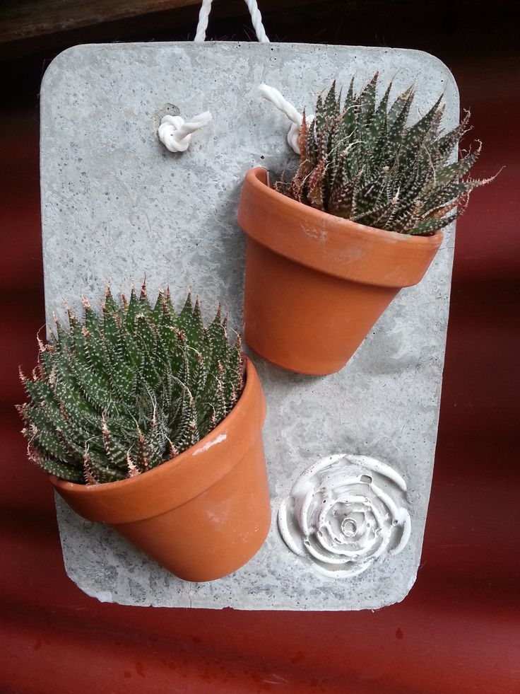 Succulent planter ideas with cement craft by Love thy garden at Karoo Square in Pretoria
