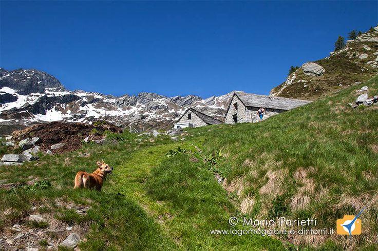 Escursione ai laghi della Cavegna nella splendida valle di Vergelleto in canton ticino