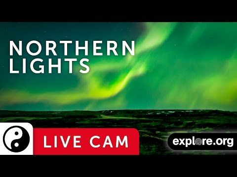 Livestream the Northern Lights direct from Manitoba, Canada : TreeHugger
