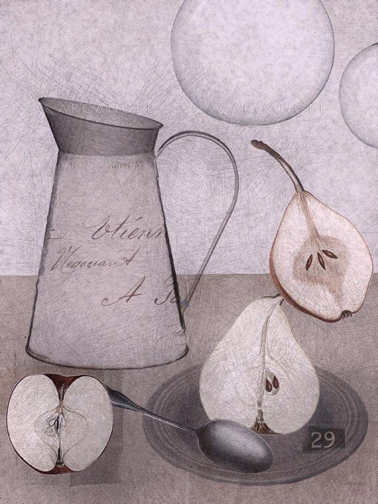 'Pears' by illustrator Sarah Jarrett