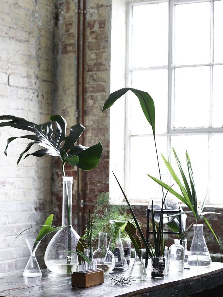 Group sIngle stems at different heights in old bottles, vases or even test tubes for a living art display