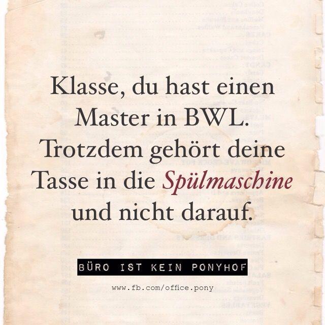 Master in BWL