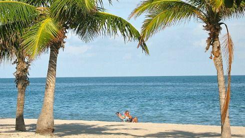 Romantic South Florida Beach -