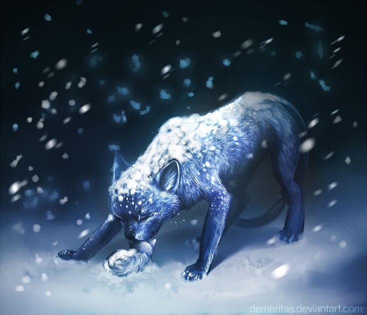Warriors Erin Hunter Lost Stars: 167 Best Bluestar Images On Pinterest
