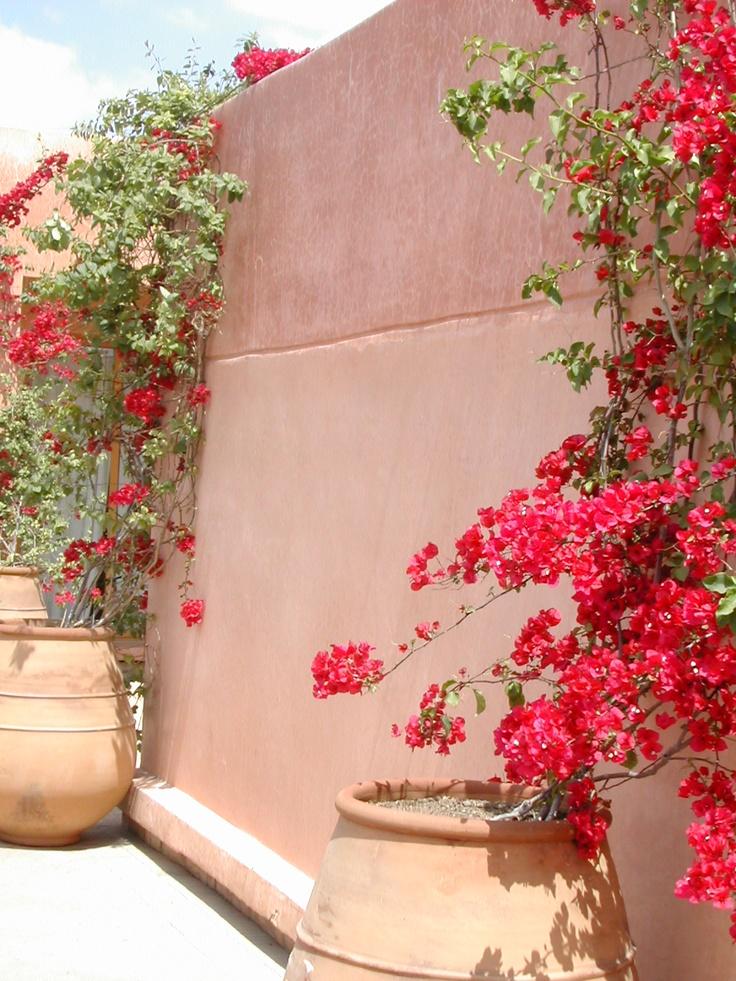 Moroccan terracotta walls