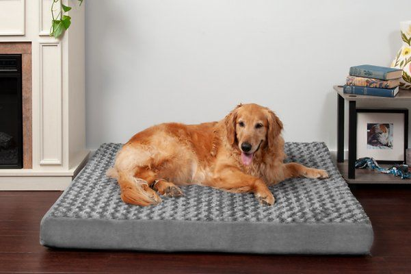 Furhaven Nap Ultra Plush Orthopedic Deluxe Cat Dog Bed W Removable Cover Cream Jumbo Plus Chewy Com Dog Pillow Bed Dog Bed Furhaven