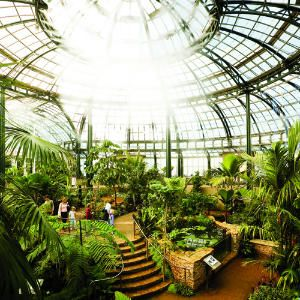 Southern California forest in glass: Inside the Huntington conservatory's central rotunda, a fine mist rains down on tropical palms and ferns.