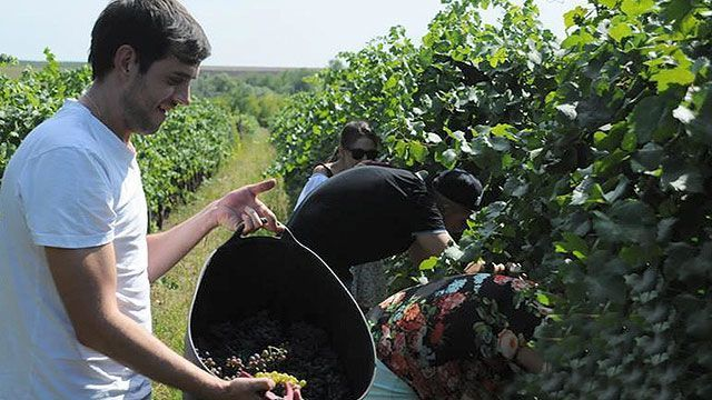 The unexplored wine region of Moldova