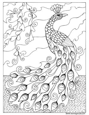 short leg studio is a game and arts production company featuring fortuna a coloring book for adults - Peacock Coloring Book