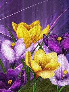 Sparkling Spring Flowers ....Yellow.... Purple..Lavender