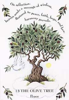Tree Magick - Olive