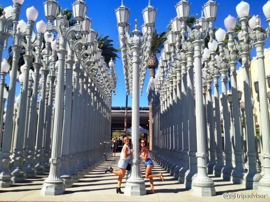 Los Angeles County Museum of Art (LACMA) Los Angeles Review | Fodor's
