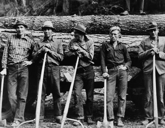 Five farmers standing in front of a lod of logs in Idaho. Levi's clad.
