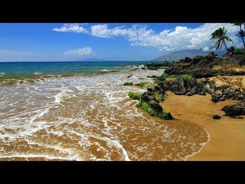 Bruit des Vagues Douces & Musique Relaxante pour Dormir. Relaxation Sleep Music Nature Ocean Waves - YouTube