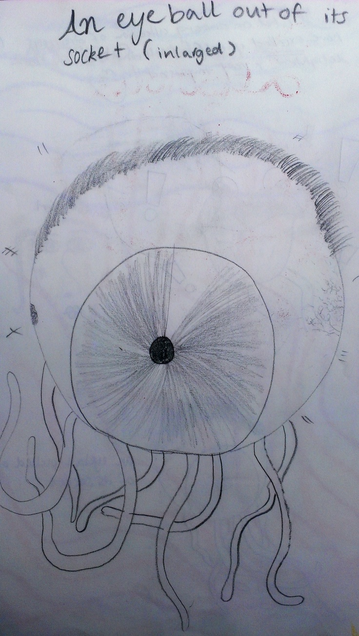 Illustration of an eyeball