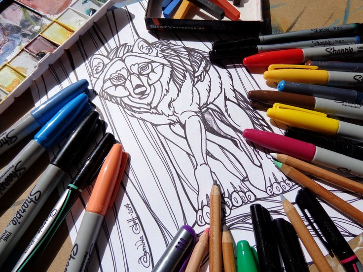 Coloring Pages Wolf : 49 best horse coloring pages images on pinterest horse coloring