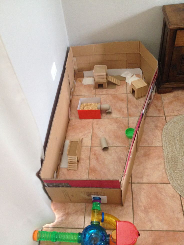 Hamster playpen my hamster diy projects pinterest for How to make a diy hamster cage