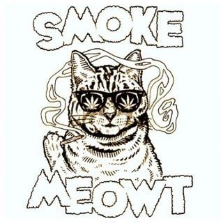 lol Thanks Keeper. It always makes me giggle that you relate anything with Meow in it directly toward me. . . . I wouldnt have any idea why:P This was hilarious.. Youve got to be kitten me..a high cat! I want one right meow!