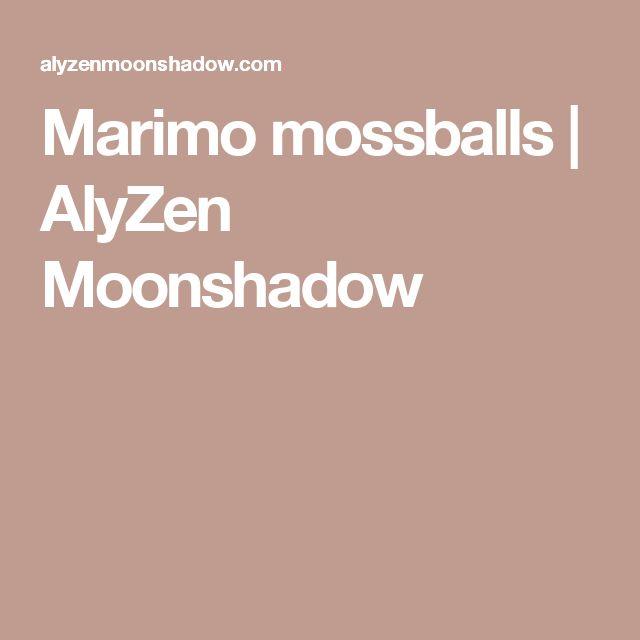 Marimo mossballs   AlyZen Moonshadow