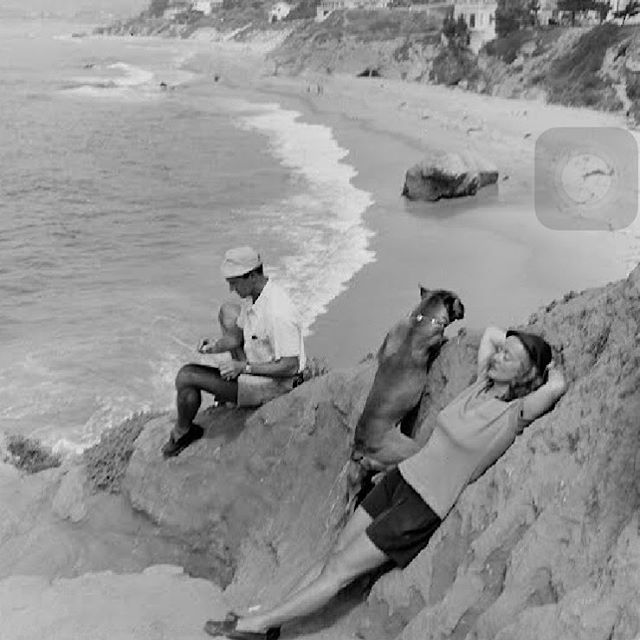 Treasure Island Laguna Beach: 17 Best Images About Classic Stars On Pinterest