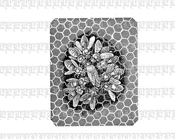 Antique Image Bee Swarm in Hive Beehive by luminariumgraphics, $2.20